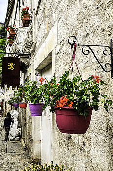 Hanging pots by Daniela White
