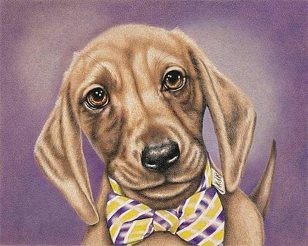Hans the Dachshund by Karrie J Butler