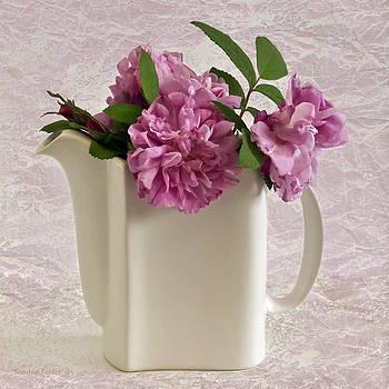 Sandra Foster - Hansa Rose Tea