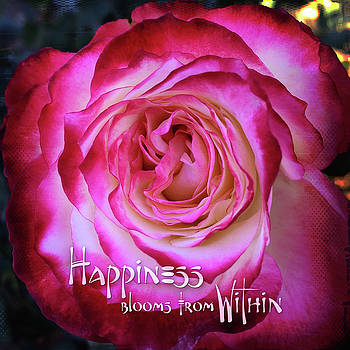 Happiness blooms from within quote, hot pink and white rose close-up photo by Marcia Luce at Luceworks