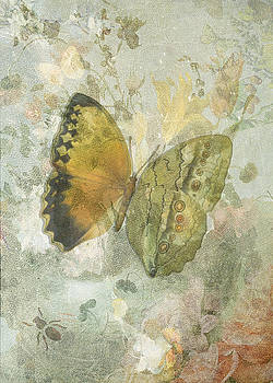 Happiness is a Butterfly by Sarah Vernon