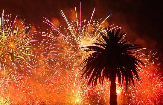 Happy Australia Day by Kelly Jones