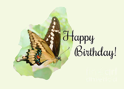 Happy Birthday Card with Butterfly by Claudia Ellis by Claudia Ellis