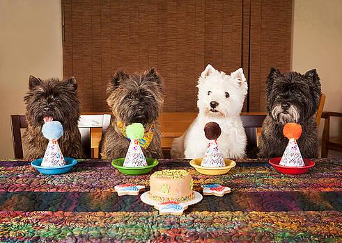 Happy Birthday Friends by Heidi Marcinik