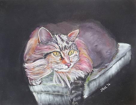Happy Cat by Janice Abel