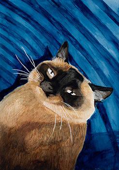 Happy Cat by Marcella Morse