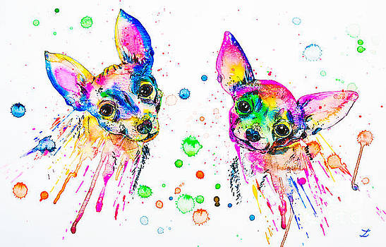 Zaira Dzhaubaeva - Happy Chihuahuas