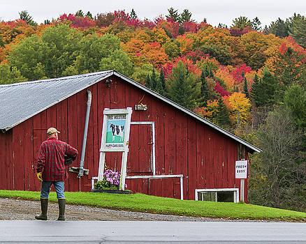 Happy Days Farm by Tim Kirchoff