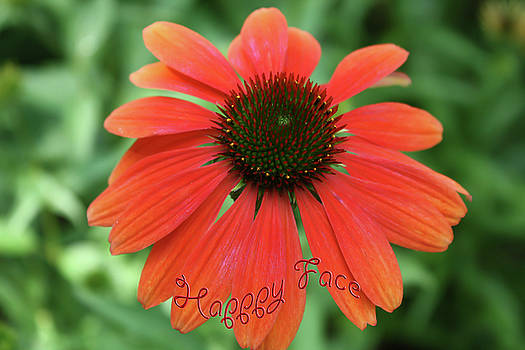 Happy Face Flower by Barbara Dean