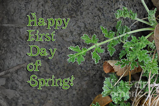 Happy First Day of Spring by Robin Clifton