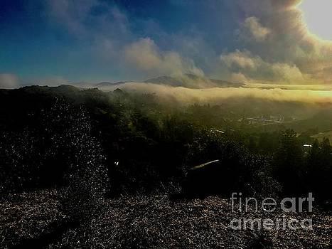 Happy Fog by Jennifer Cadence Spalding