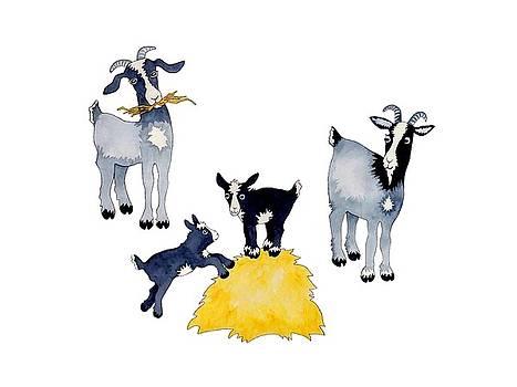 Happy Goats by Sarah Rosedahl