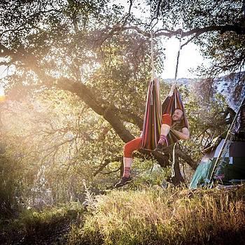 Happy Hammock Dreams @lucidityfestival by Jacob Avanzato