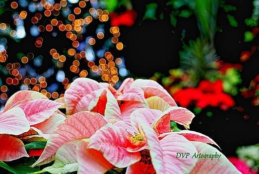 Happy Holidays  by DVP Artography