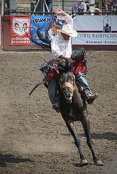 Happy Horse Bucking by Melisa Meyers