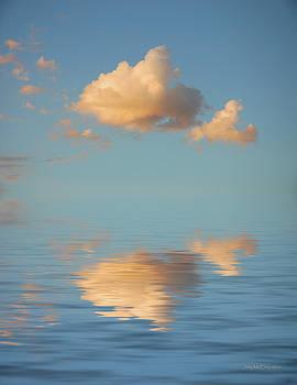 Jerry McElroy - Happy Little Cloud