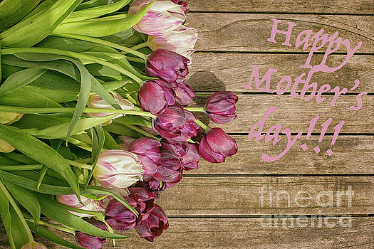 Patricia Hofmeester - Happy mothers day