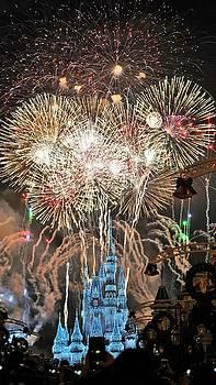 Happy New Year from Walt Disney World by Barkley Simpson