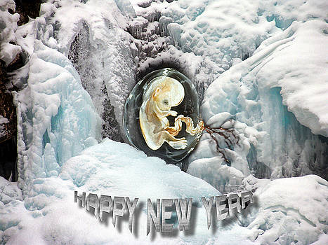 Happy New Year by Otto Rapp