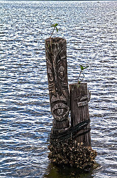 Happy Pilings by Carol Orr Hartman