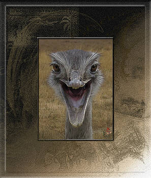 Banjo the Emu and Happy To See You by Patricia Whitaker