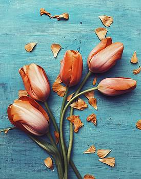 Happy Tulips by Olivia StClaire