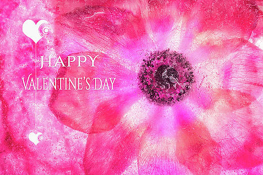 Happy Valentines Day by Zina Zinchik
