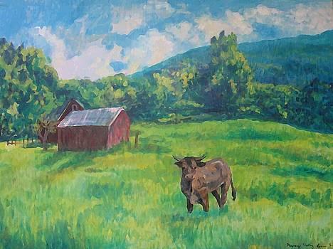 Happy Valley Bull by Lyn Vic