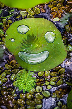 Happy Water Face by Roger Mullenhour