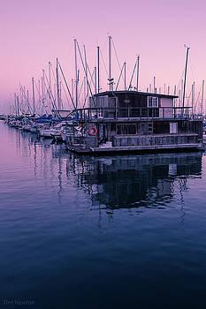 Tim Newton - Harbor at Santa Barbara
