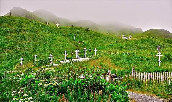Harbor Cemetery by Mark Lemon