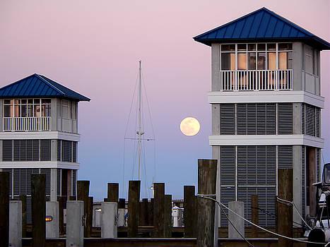 Harbor Moon by Kathy K McClellan