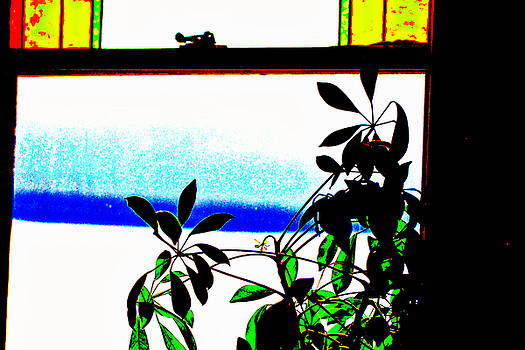 David Ralph Johnson - Harbor Side Window