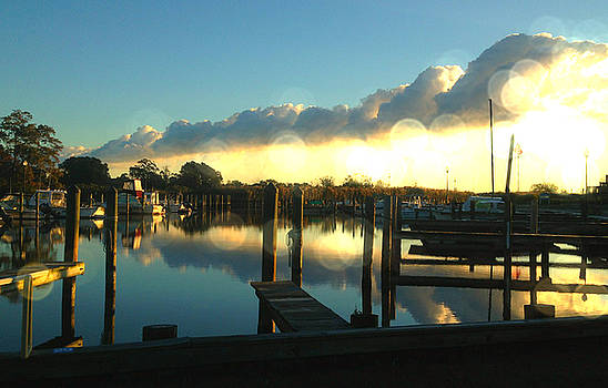 Harbor View by Sheryl Bergman