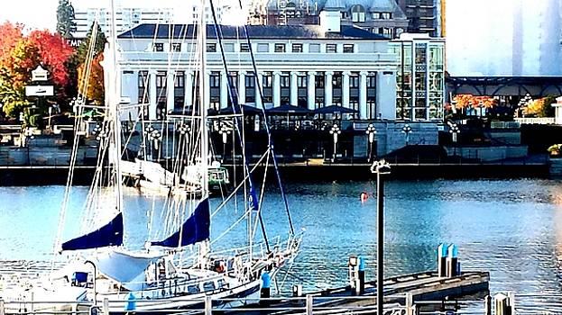 Nikki Dalton - Harbour Sail