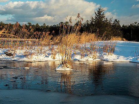 Louis Dallara - Hard frosts and icy drafts