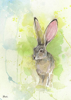 Hare by Angel Tarantella