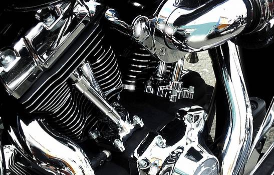 Harley Davidson 10 by Marcello Cicchini