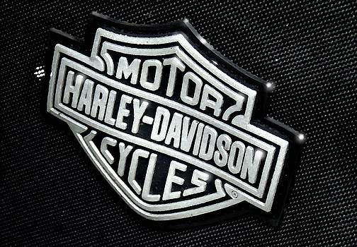 Harley Davidson 6 by Marcello Cicchini