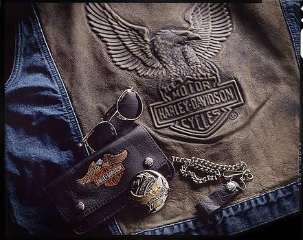 Harley Davidson by Bud Simpson