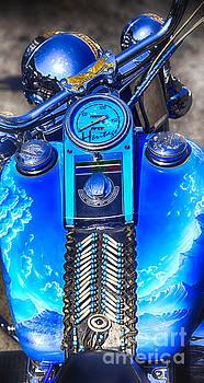 Harley Davidson Eagle Spirit by Stefano Senise