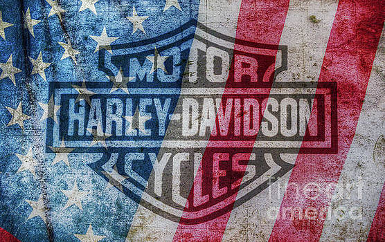 Harley Davidson Logo American Flag by Randy Steele