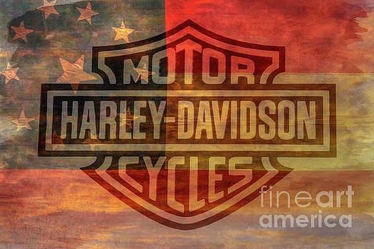 Harley Davidson Logo Old Confederate Flag by Randy Steele