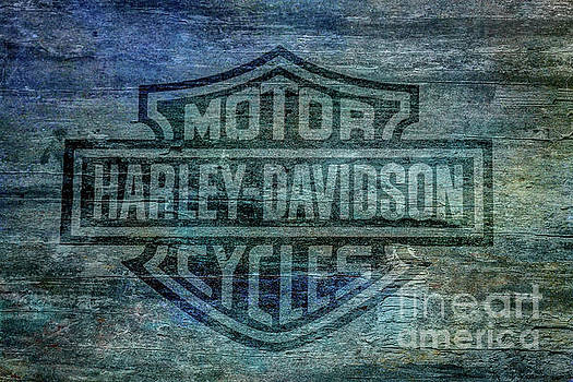 Randy Steele - Harley Davidson Logo Weathered Wood