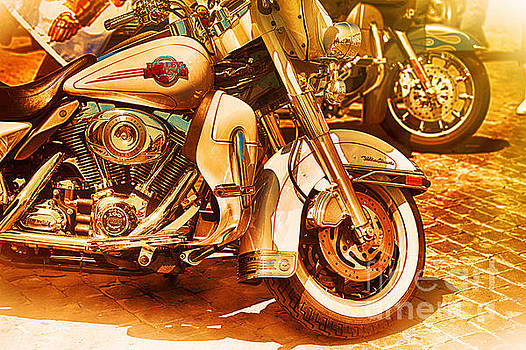 Harley Davidson Motor Cycles by Stefano Senise