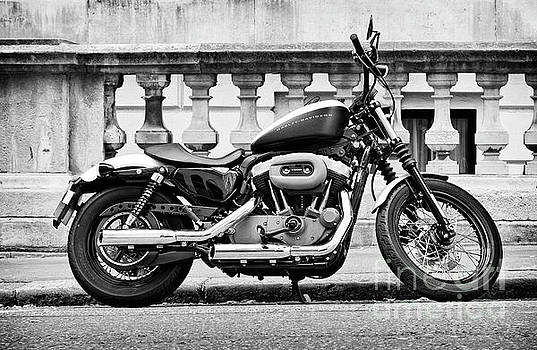 Harley Davidson V-Twin by David Bleeker