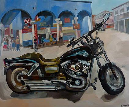 Harley-Davidson Venice Beach by Carmen Stanescu Kutzelnig
