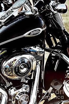 Harley-Davidson by Vladimir Sidoropolev