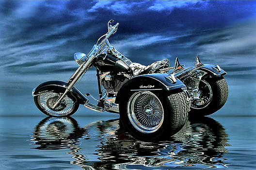 Harley Heritage Soft Tail Trike by Steven Agius