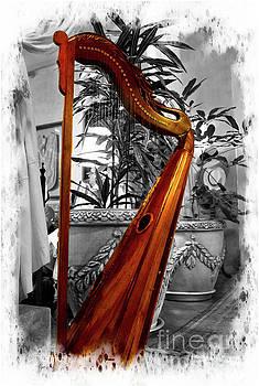 Harp At Mansion Alcazar, Cuenca, Ecuador by Al Bourassa